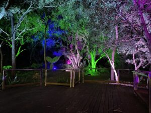 Outside lighting by QPAC